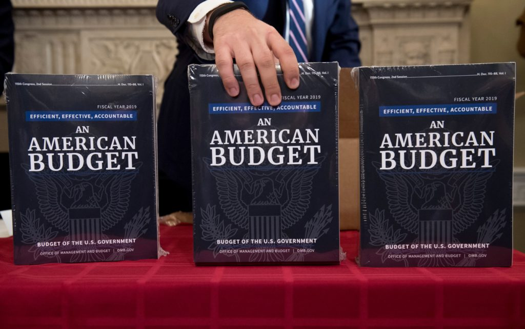 Row of books with the title of An American Budget sitting on a table.